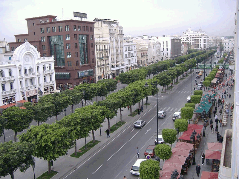 TRAVAUX DE RENNOVATION ET D'EMBLISSEMENT DE L'AVENUE HABIB BOURGUIBA A LA CAPITALE